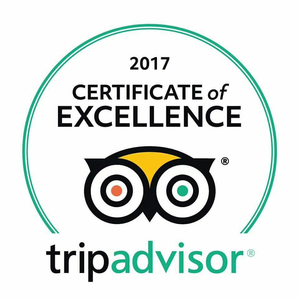 Trip Advisor Certificate of Excellence - Poland Active